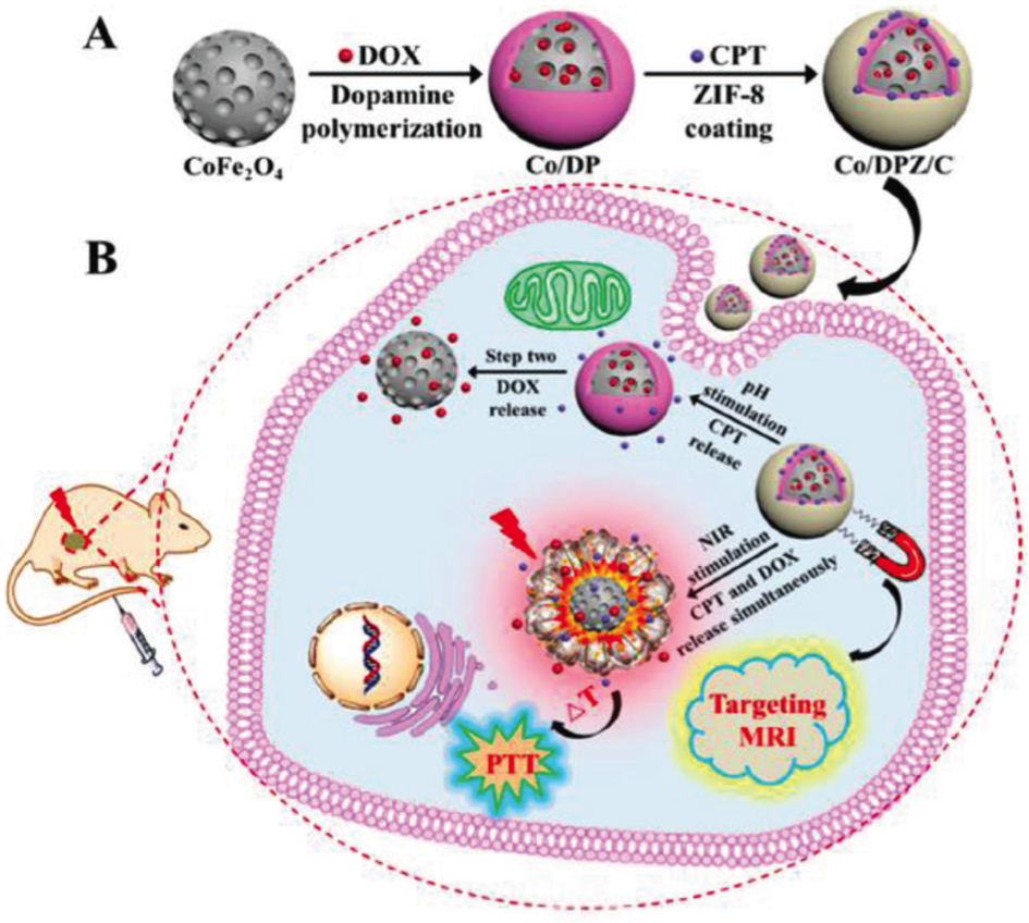 Nanoparticles Of Metal Organic Frameworks On The Road To In